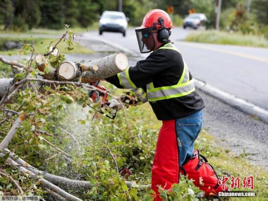 """当地时间2019年9月8日,加拿大新斯科舍,据""""中央社""""报道,7日,""""多里安""""袭击加拿大大西洋沿岸地区,吹倒树木、造成逾37万人无电可用,新斯科舍省首府哈利法克斯(Halifax)市区一个建筑起重机也被吹翻。加拿大飓风中心表示,""""多里安""""目前是强烈后热带风暴,以每小时150公里风速通过哈利法克斯。法新社引述当地官员说法表示,""""多里安""""已在诺省带来100毫米雨量,8日雨量恐翻倍。"""